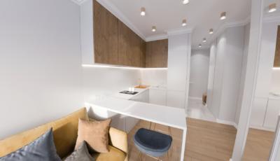 3d render виртуальный тур по однокомнатной квартире 3D Model